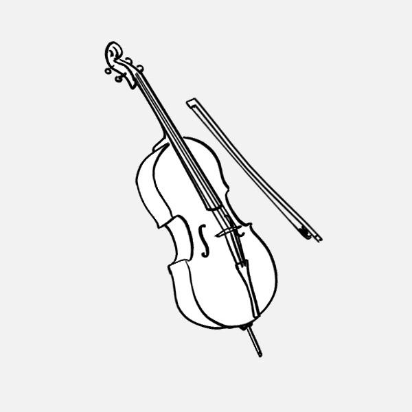 29 cello