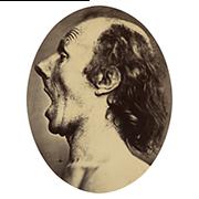 «Дурно изображенное изумление» — стикер для Viber и Telegram из набора «Эмоции Дарвина»