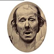 «Удивление» — стикер для Viber и Telegram из набора «Эмоции Дарвина»